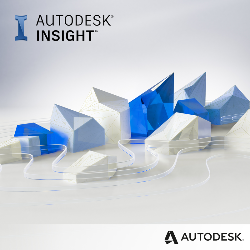 Autodesk Insight